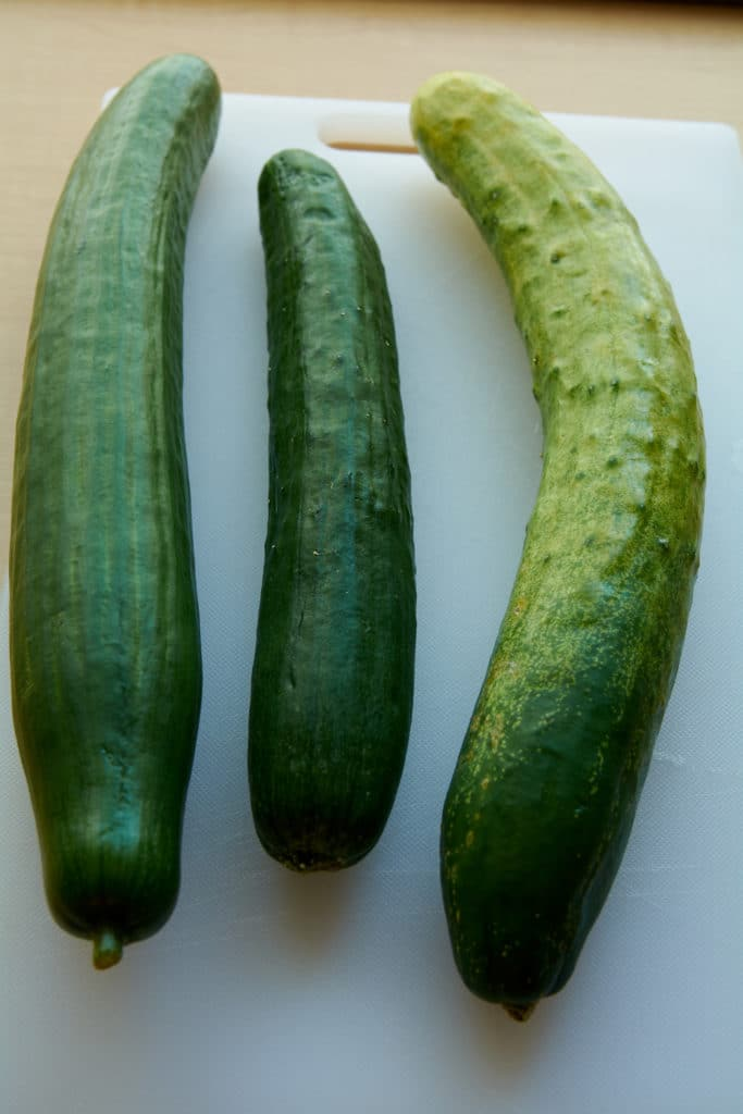 Three different types of cucumbers